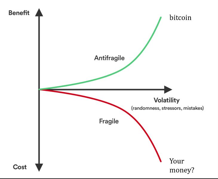 bitcoin kormány